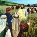 Ngày Sabbat làm ra vì loài người