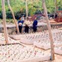Người công giáo Việt Nam đã bảo vệ cuộc sống của trẻ em chưa sinh như thế nào