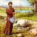 27/01 Người gieo hạt đi gieo hạt giống