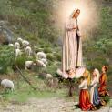"""""""Năm xưa cây sồi làng Fatima"""""""