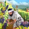 21/08 Lòng nhân lành của Chúa