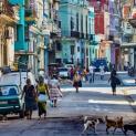 Các giám mục Cuba thông báo cho Đức Thánh cha về thảm trạng tại đảo này