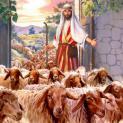 13/05 Ta là cửa chuồng chiên