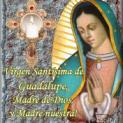 Đức Thánh Cha chủ sự Thánh Lễ kính Đức Mẹ Guadalupe