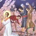 Thánh Stêphanô, vị Tử đạo tiên khởi