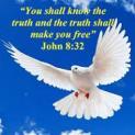 Ai là kẻ gây kích động: Đức Cha Phaolô hay chính VTV1?