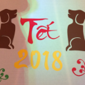 Chút tâm tình của Chó ngày đầu năm mới