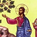 Sống sinh hoa kết quả cho Chúa