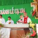Hội Thừa Sai Việt Nam mừng kim khánh Linh Mục của Đức Cha Phêrô Trần Đình Tứ