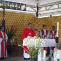 Mừng lễ các thánh Anh Hài tại lăng các thai nhi