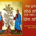 31/01 Chúng ta sẽ lấy gì mà hình dung nước Thiên Chúa?